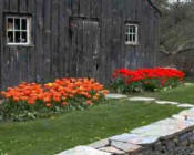 Berkshire Botanical Garden - Attractions In The Berkshires