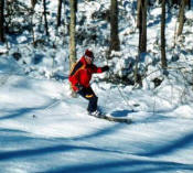 Cross Country Skiing In Berkshire County, Golfing In Berkshire County, Horseback Riding In Berkshire County, Camping In Berkshire County, Skiing In Berkshire County, Golf Courses In Berkshire County, Horse Back Riding In Berkshire County